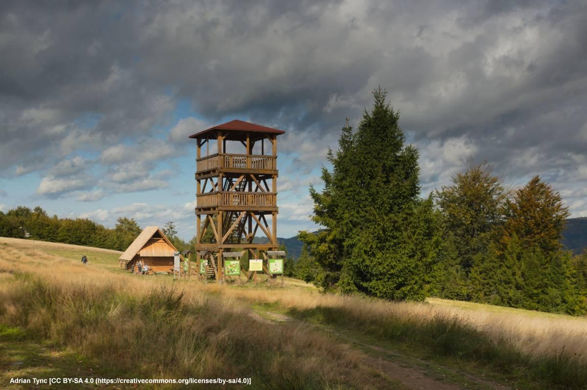 Wieża widokowa na Starym Groniu