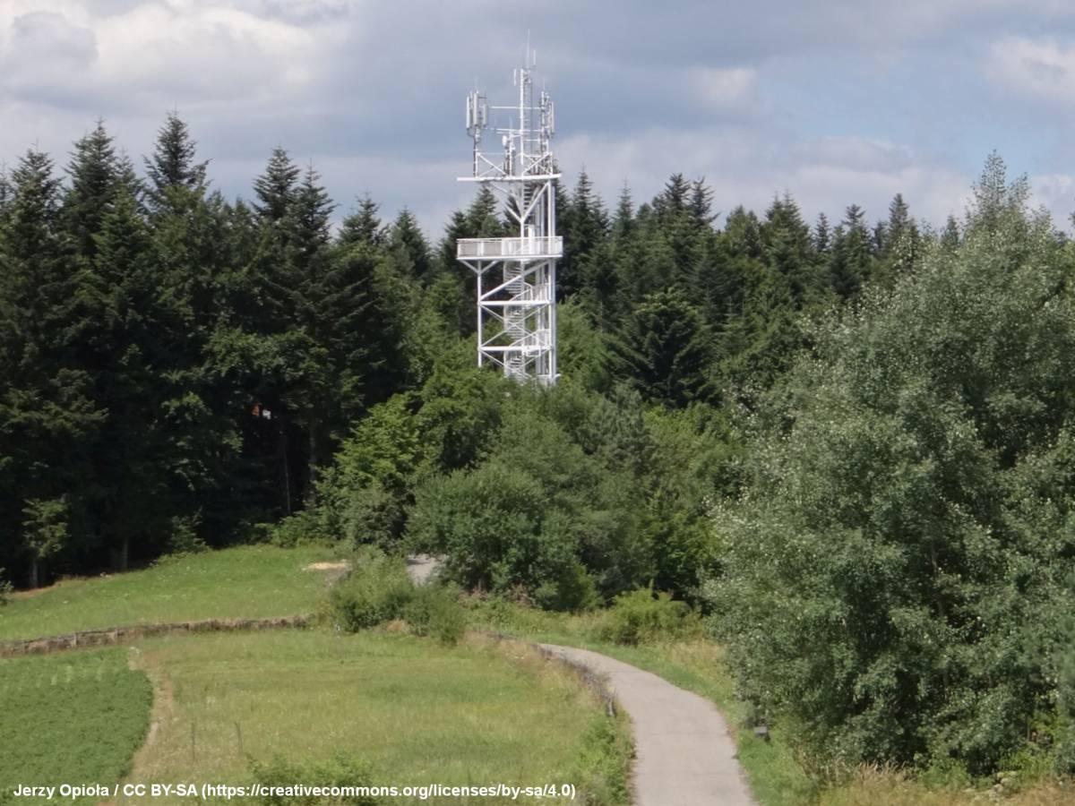 Wieża widokowa na Górze Chełm koło Myślenic